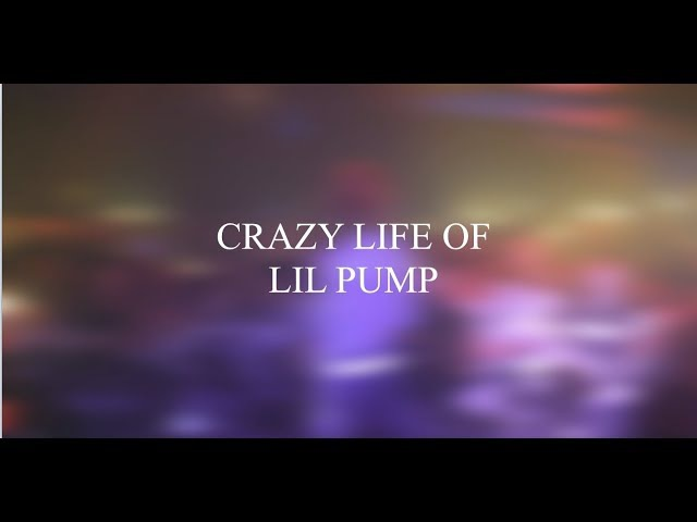 Сумасшедшая жизнь Lil Pump'a. Часть 1. Русские субтиры.