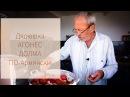 ДОЛМА ПО Армянски Настояший рецепт ДОЛМА В капустных листьях