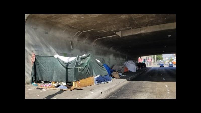 Living Beneath The 101 Overpass In LA