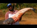 World Biggest Full Fish Cooking 25kg's Big Grilled Fish