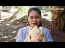 Awesome Cooking Chicken With Banana Flower Recipe - Cook Chicken Recipes - Village Food Factory