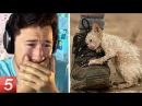 VIDEO That WILL Make YOU CRY (95% Restore Faith In Humanity After Watching 2017!)