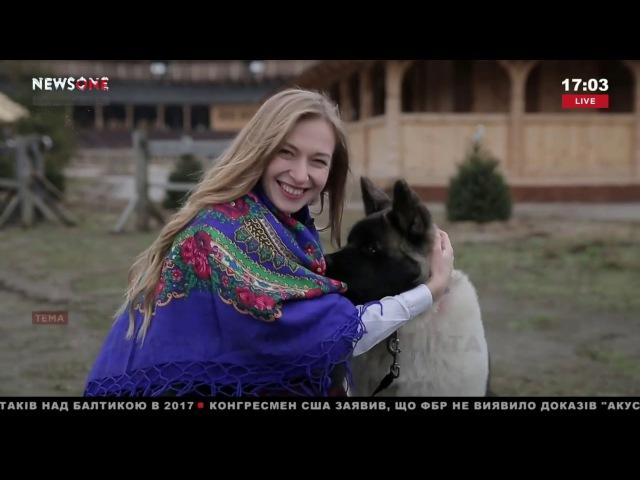 NewsOne знакомит вас с украинские традициями и приметами Рождества 07 01 18