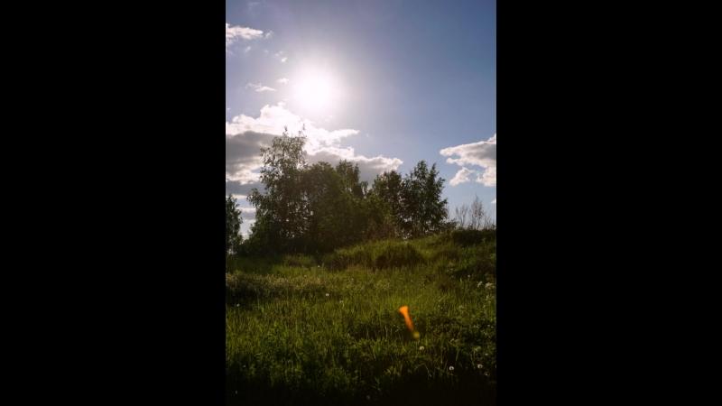 Род Сб перед Святая Троица Тараканиха и Рыженино 2017 06 03 06 под калевала