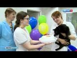 В Перми День рождения празднует Кот-донор