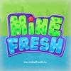 MineFresh [1.8-1.11.2] IP: mc.minefresh.ru