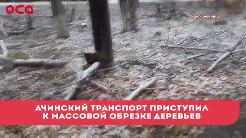 В Ачинск прибыла необходимая вакцина и другие новости » Freewka.com - Смотреть онлайн в хорощем качестве