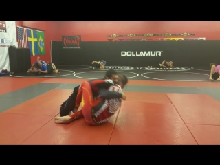 Butterfly Sweep vs Half Guard Pass