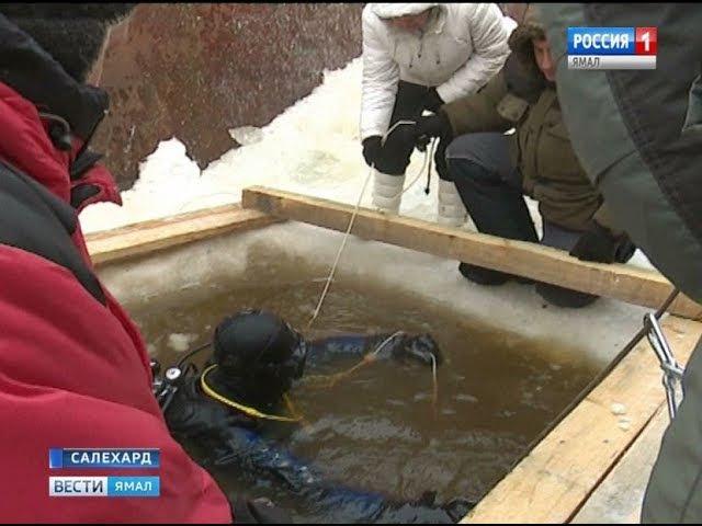 Арктическим дайверам пришлось в мороз спускаться под лед реки Полуй