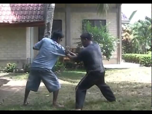 LEMA SCIENTIFIC KALI ARNIS SYSTEM