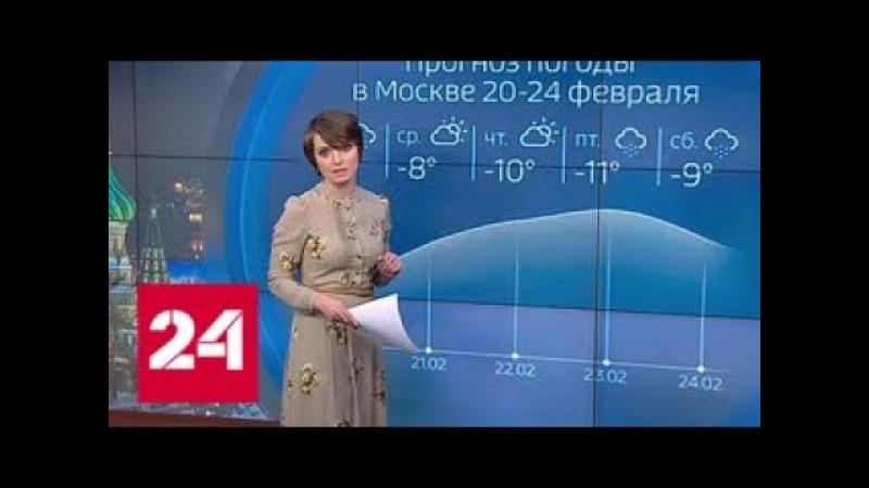 Погода 24: Центральную Россию охватят сибирские морозы - Россия 24