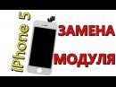 IPhone 5 замена модуля (дисплей тачскрин)