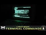 VMT 036 LINUX Bash Basic Commands