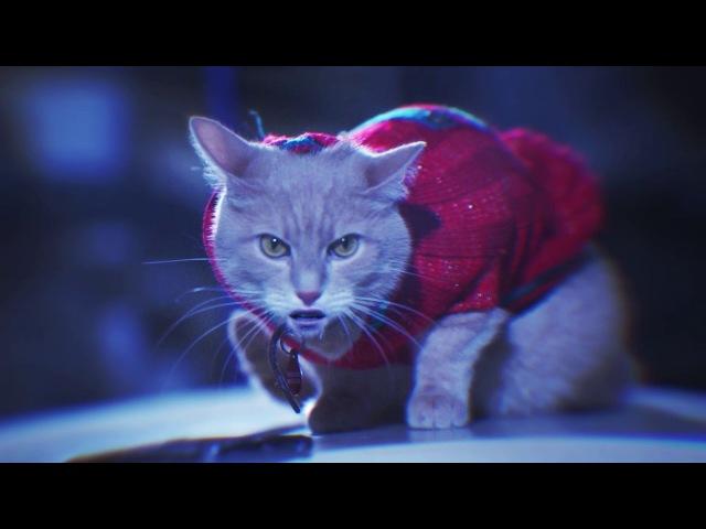 Verinsky Krupnov Киски на вписке Official Video
