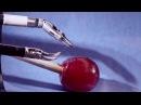 Робот хирург Да Винчи операция винограда