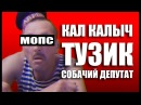 Топ Контентыч - Мопс Дядя Пес Music Video