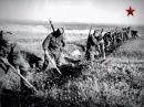 Документальные фильмы о великой отечественной войне Линия Сталина Полоцкий ру