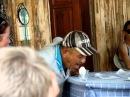 ORIGINAL Turkish man yelling meow at an egg
