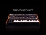 Moog Subsequent 37 Solo 890 2