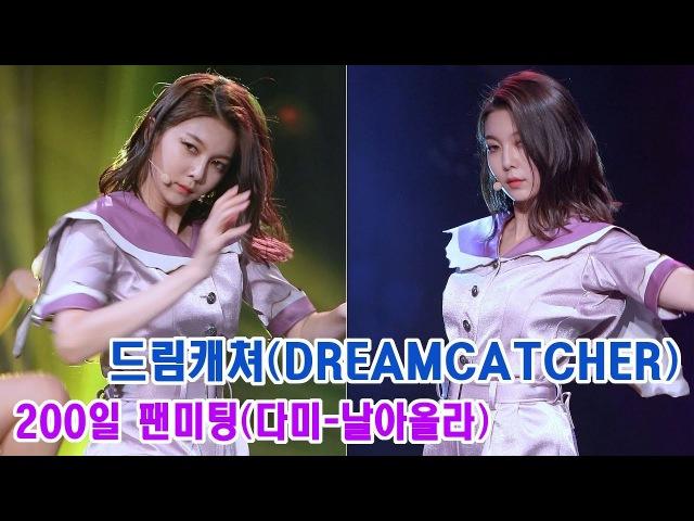 170730 드림캐쳐 다미 직캠 '날아올라' DREAMCATCHER Dami Fancam 'Fly high' @200일 팬미팅 @일지아트홀 By 천4