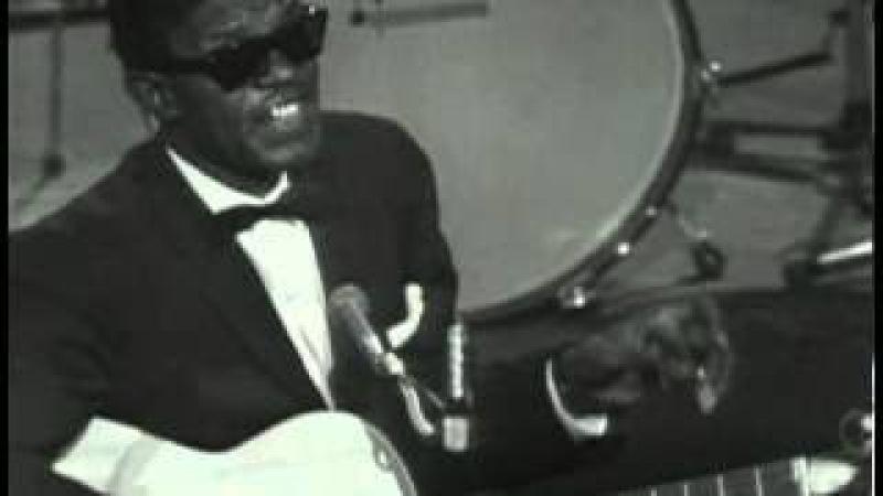 01 The American Folk Blues Festival 1962 1966 vol 1