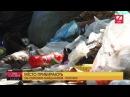 Сихів потопає в смітті