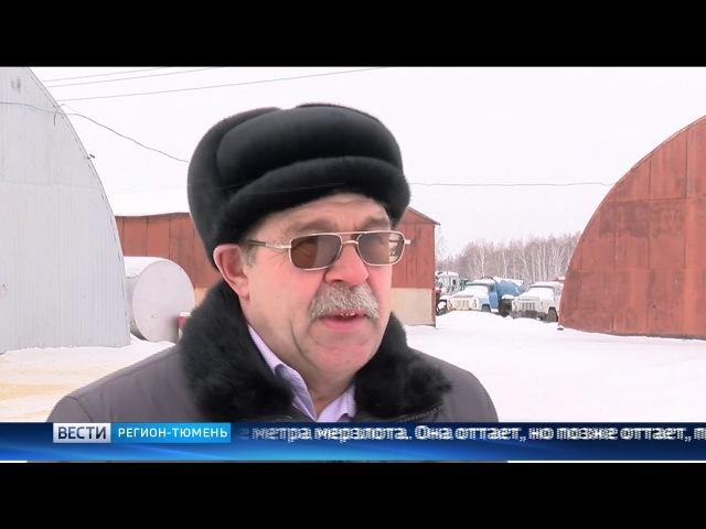 Аграрии Тюменской области обеспокоились бесснежной зимой