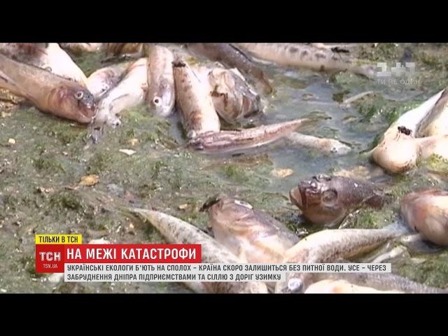 Наближення катастрофи: екологи заявили про критичне забруднення Дніпра