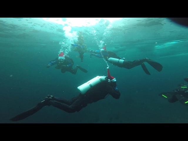 Екатеринбургские дайверы установили под водой елку и станцевали хоровод