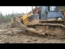 Вывозка леса Орджоникидзе