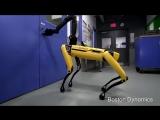 Boston Dynamics научила робота-собаку открывать двери [NR]