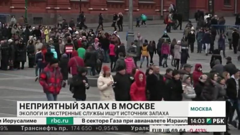Причины запаха квашенной капусты в Москве