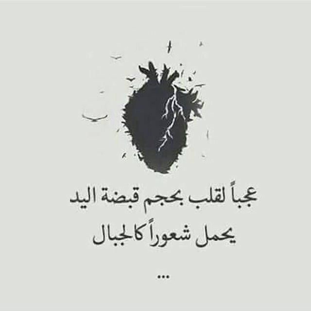 Удивительно, как сердце размером с кулак несет в себе чувства размером с горы...