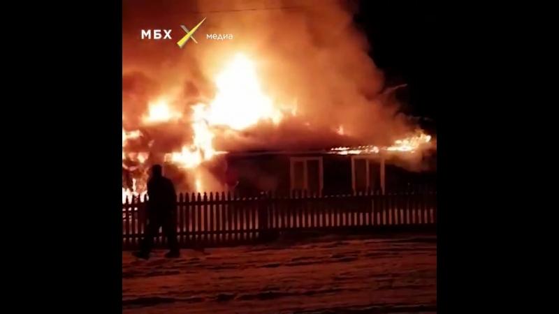 На Алтае сожгли дом Владимира Швецова — активиста, который выступает против вырубки и продажи в Китай столетних реликтовых дерев