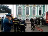 Пожар в Эрмитаже, жертвами которого стали коты