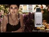 Номерная парфюмерия Shaik суперстойкость, качество, шлейф