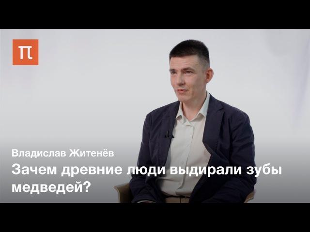 Культ медведя в палеолите — Владислав Житенёв