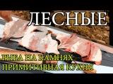 Дикая кухня - ЖАРЕНАЯ РЫБА НА КАМНЯХ   Cooking Fish With Hot Rocks lbrfz re[yz - ;fhtyfz hs,f yf rfvyz[   cooking fish with hot