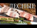 Дикая кухня - ЖАРЕНАЯ РЫБА НА КАМНЯХ | Cooking Fish With Hot Rocks lbrfz re[yz - ;fhtyfz hs,f yf rfvyz[ | cooking fish with hot