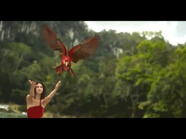 Elysion - Killing My Dreams