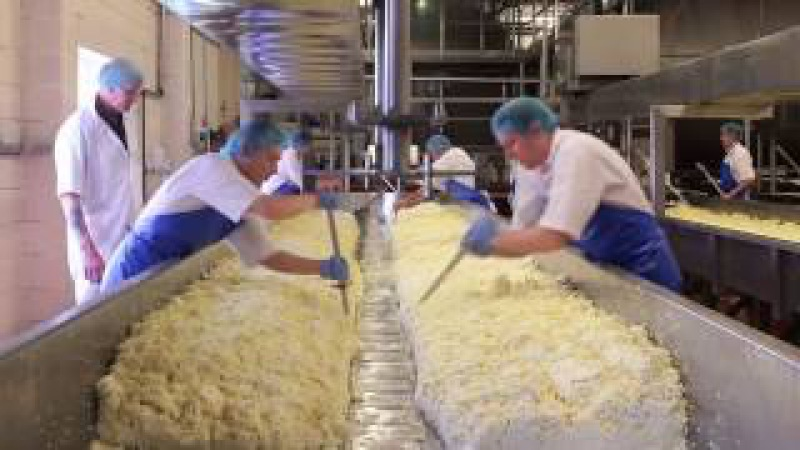World Amazing Cheese Making Process How It's Made Awesome Swiss Cheese Factory CNC Technology