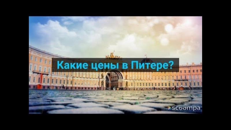 Сколько стоит съездить в Санкт Петербург Жилье транспорт питание экскурсии Обзор 2017