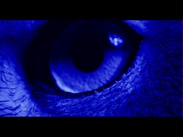 Ben Frost - All That You Love Will Be Eviscerated (Official Video)