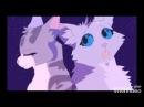 Моя самая лучшая подруга!,,Песня посвящается каналу коты воители Быстролап
