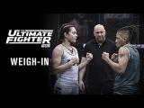 Прямая трансляция церемонии взвешивания турнира The Ultimate Fighter 26 Finale