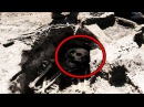 У Археологов мурашки по коже от найденного артефакта 23 11 2017
