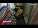 Вести-Москва • Таможенники взяли шопоголиков под контроль