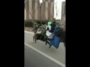 гифка-азиатские-выдумщики-мотоцикл-бревно-4374026