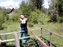 Моя клубничная плантация