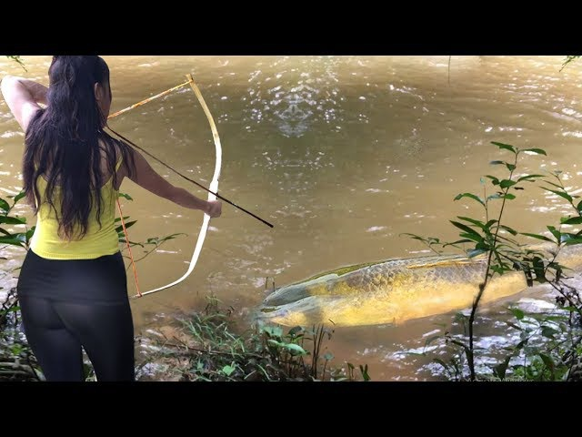 Beautiful Girl Uses Bamboo Compound BowFishing To Shoot Fish Khmer Fishing At Siem Reap Cambodia